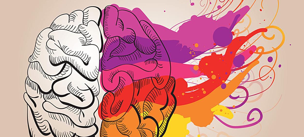 Illustration eines Gehirn, farbige Pinzelstriche